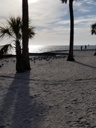 180207_Pine Island Beach Park_004