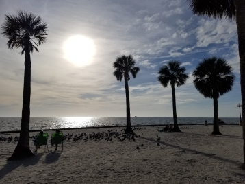 180207_Pine Island Beach Park_019-Edit
